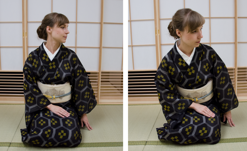 胸で見る 日本舞踊の魅力 基本